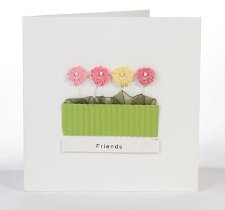 Potted Asters pink greetings card (square)